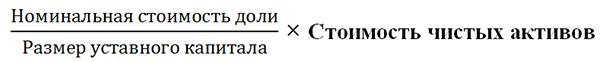 Формула доли в уставном капитале